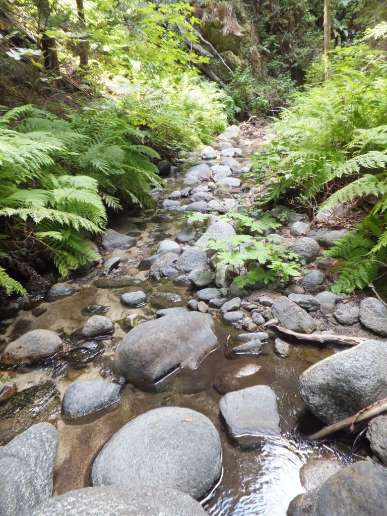 rocky-creek-big-sur-10