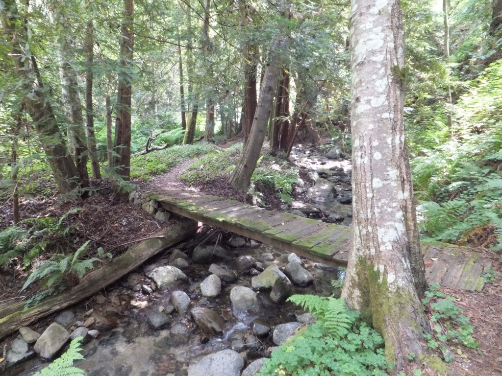 rocky-creek-big-sur-9